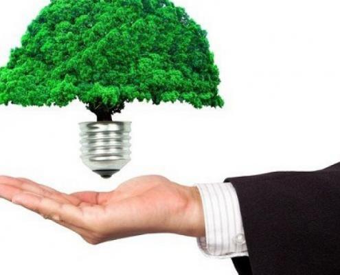 Idéias de sustentabilidade para sua empresa