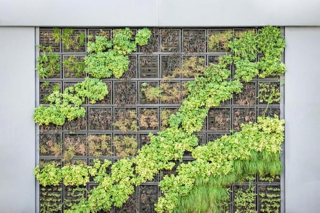 O jardim vertical é uma opção para quem tem pouco espaço e deseja incluir vegetação no ambiente corporativo.